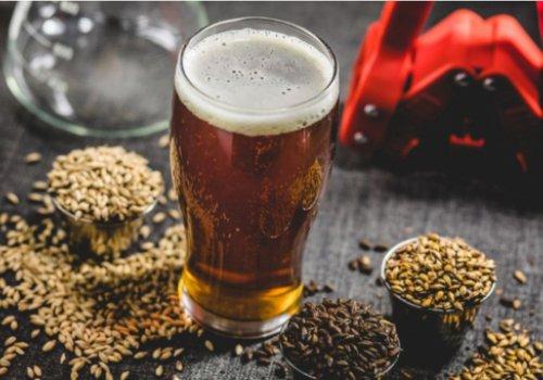 Birra artigianale, dall'1 luglio le accise tagliate del 40%. Accolta la richiesta CNA. In Trentino Alto Adige ne beneficeranno 51 birrifici artigianali