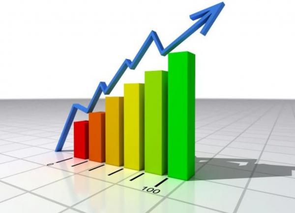 Wachstum und alternative Unternehmensstrategien. Beantworten Sie den Fragebogen